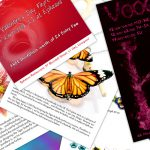 A range of leaflets and broochures made by Web 4 Infinity, Liverpool