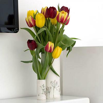 Vase social media image